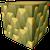 Ancient Wood Trunk