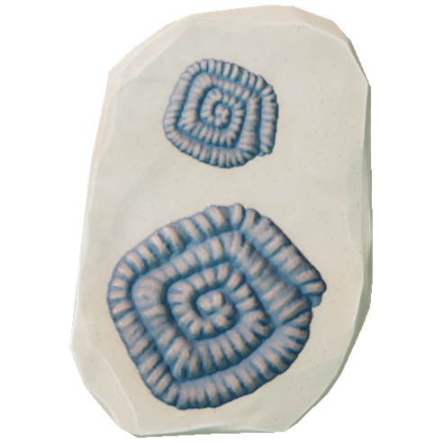Small Fossil